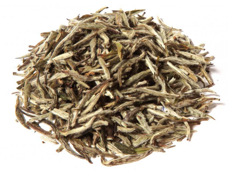 Tè Bianco White Dragon Silver Needle Organic